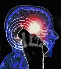 cerveau gsm