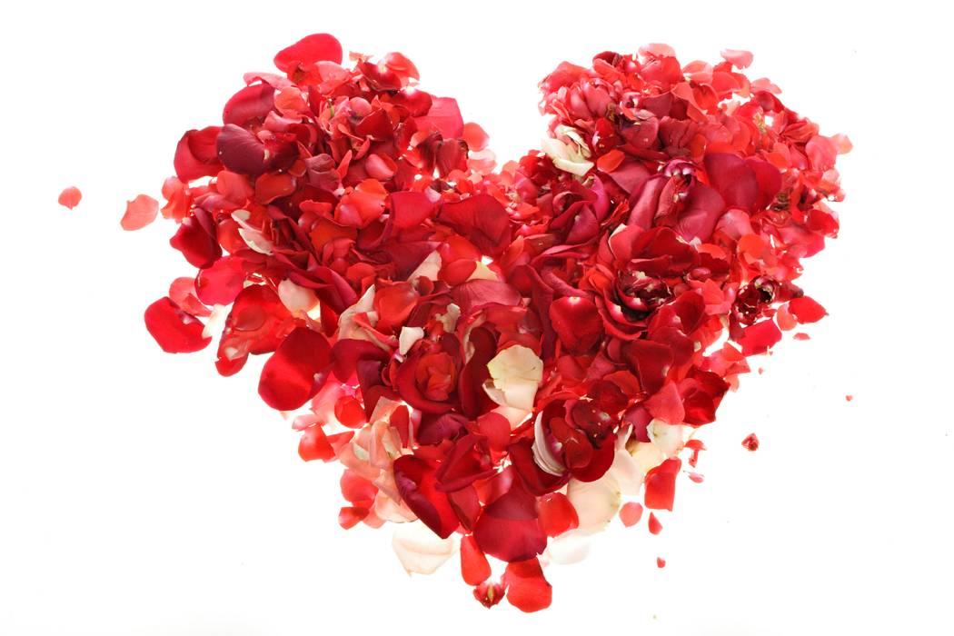 coeur pétales de rose